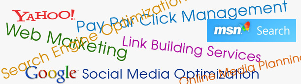 seo outsourcing firm india, seo consultant delhi